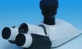 Mikroskoptuben
