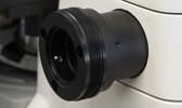für Mikroskope mit Anschluss 60N