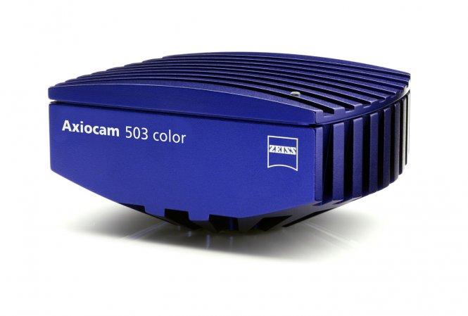 "Zeiss Axiocam 503 color (USB3, 2.8MP, 2/3"")"
