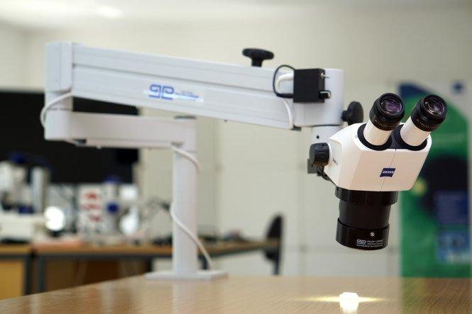 Stereomikroskop Stemi 305 mit Tischstativ und Stemi-Spot Senkrechtbeleuchtung