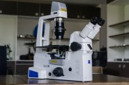 Mikroskop Axio Vert.A1 KMAT, Auflicht/Durchlicht, für Fluoreszenz
