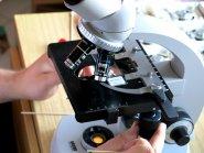 Mikroskopreparatur