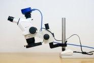 Stemi 508 mit inversem Tischstativ und Neigekupplung und Ringlicht