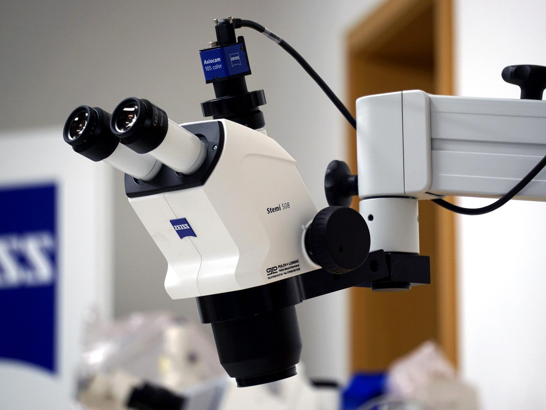 Stereomikroskop stemi 508 doc mit flexi tischstativ