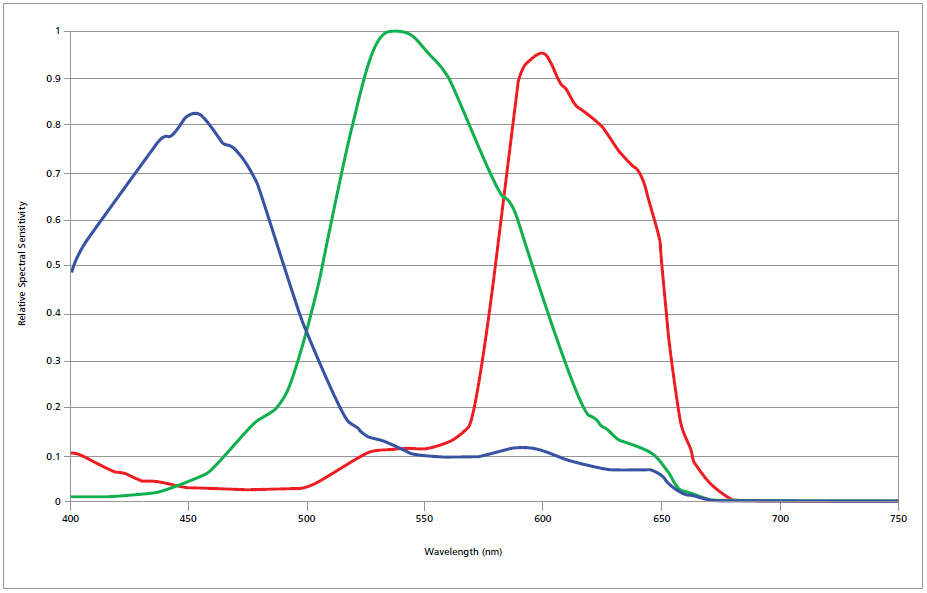 RGB-Empfindlichkeit Axiocam 105 color
